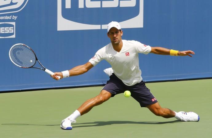 Djokovic's main competitors